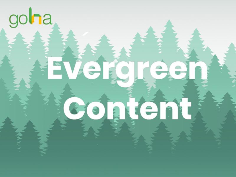 evergreen-content-giup-tich-luy-traffic-lau-dai